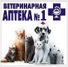 Ветеринарные аптеки в Южно-Сухокумске